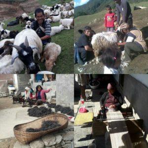 livelihood in sikles